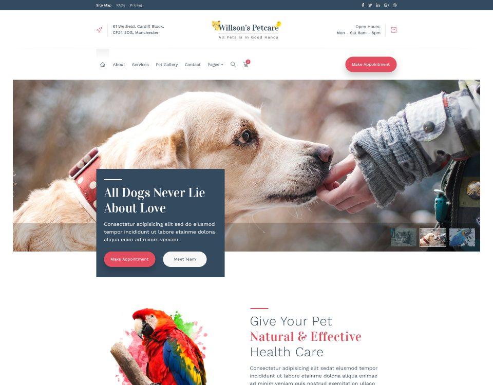 Pet Clinic 4