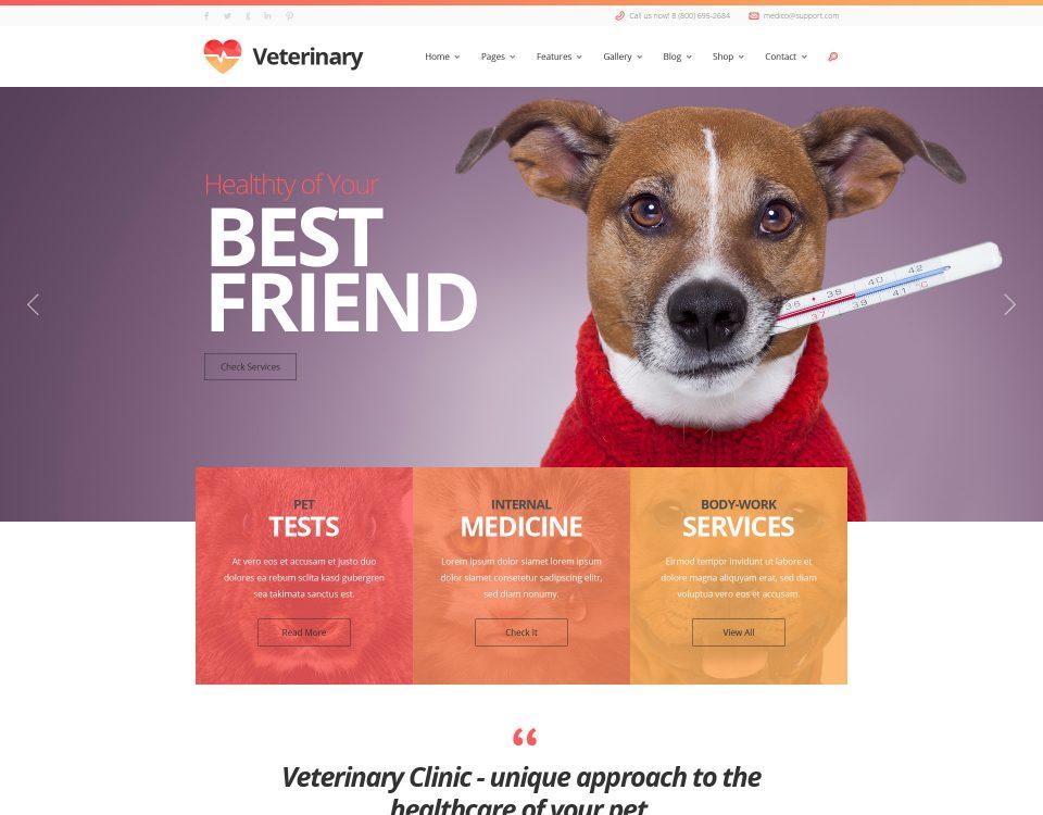 Vet Clinic 6