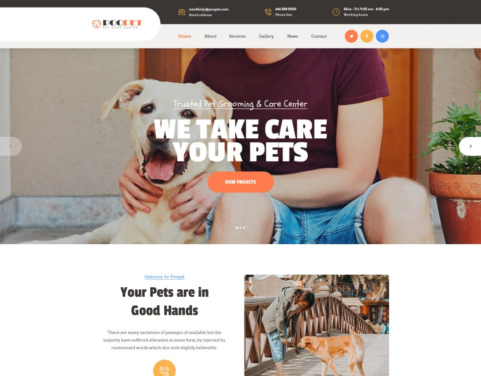 Pet Clinic 11