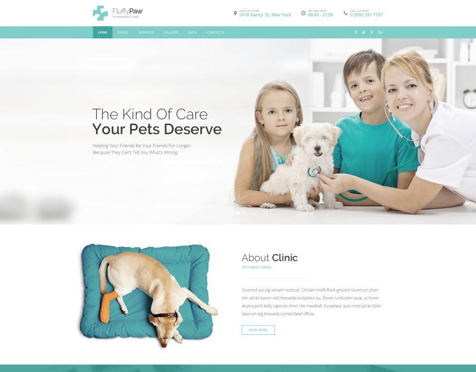 Pet Clinic 12