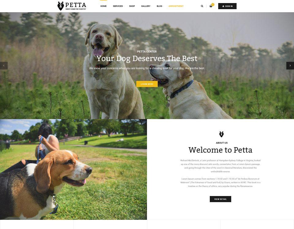 Pet Clinic 8